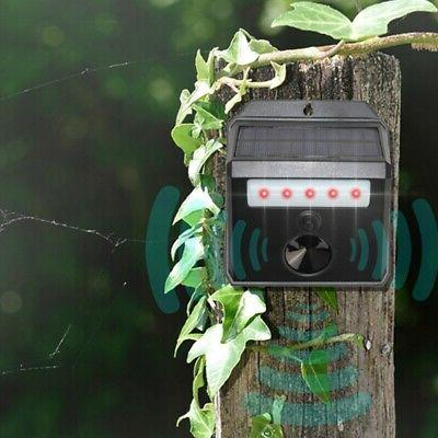 Outdoor Repeller Bird Pest