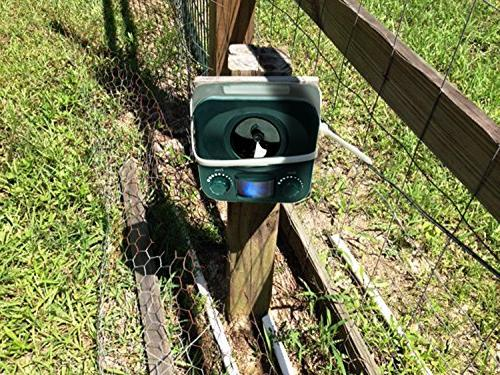 Bird-X Yard Electronic Animal unwanted out your yard with ultrasonic sound-waves