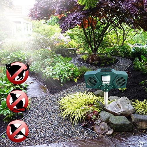 Ultrasonic Solar Animal Pest 30' Motion Sensor, LED Control Cats, Dogs, Deer, Birds - Weather Includes USB Cable